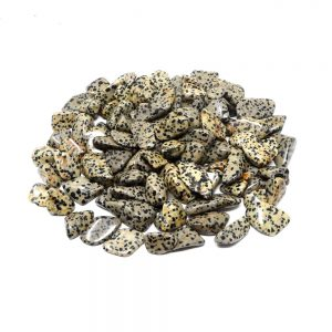 Dalmatian Jasper md tumbled 16oz All Tumbled Stones bulk crystals