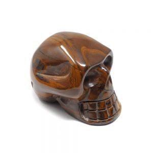 Gold Tiger Eye Skull All Polished Crystals crystal skull