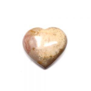Petrified Wood Heart All Polished Crystals crystal heart