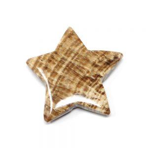 Aragonite Star All Specialty Items aragonite