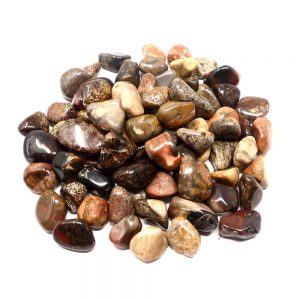 Jasper, Jungle, tumbled, 8oz All Tumbled Stones bulk crystals