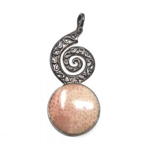Fossilized Coral Pendant All Crystal Jewelry coral